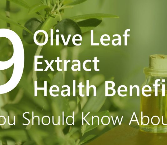 9 Olive Leaf Extract Health Benefits